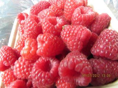 Rasp_berri..g_fresh.jpg