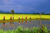 Central Myanmar