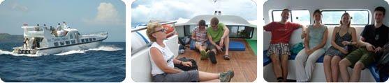 Sea Marlin From Gili Meno to Bali Indonesia