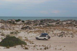 Amongst the sand dunes, Eucla WA