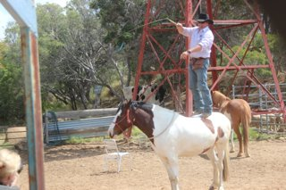 The Outback Show at Stockmans Hall of Fame