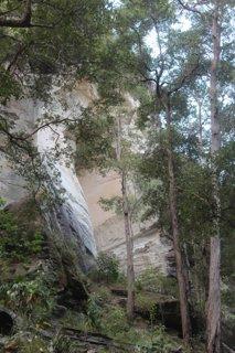 Sandstone walls at Carnarvon Gorge