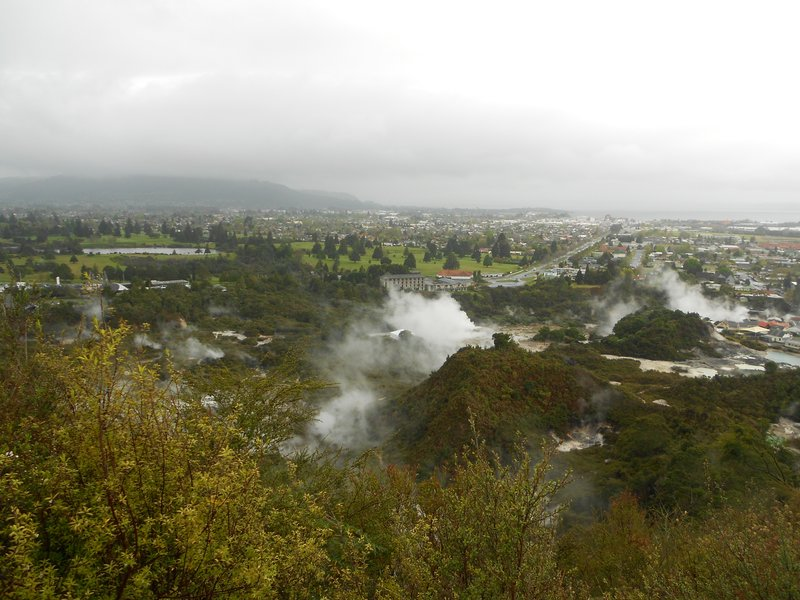 View of the geysers and Rotorua from the Redwood forest walk