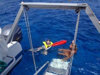 snorkel2.jpg