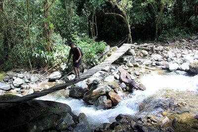 Bridge crossing in Valle de Cocora