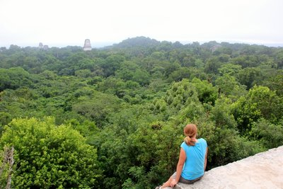 Tikal from Temple 4