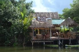 ollys place