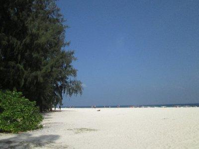 Bamboo_Island__5_.jpg