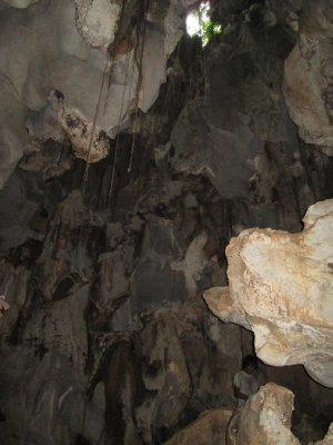 Cave1__10_.jpg