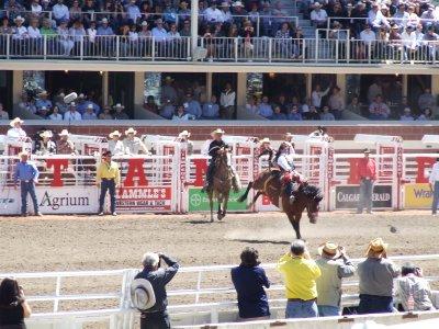 Rodeo: SaddleBronc