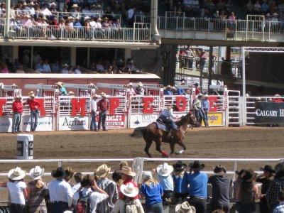 Rodeo: Barrel Racing