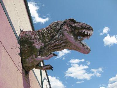 Glendive Dino & Fossil Museum