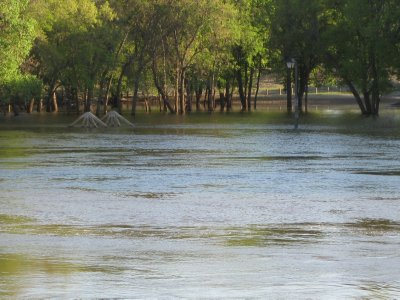 Lamppost in Flood Zone