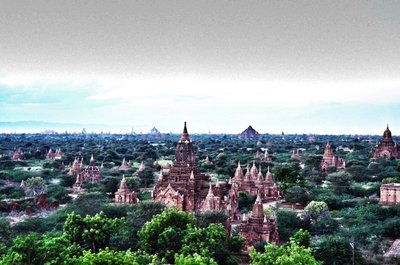bagAN.jpg
