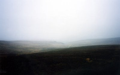 Wicklow mountains, peat bogs