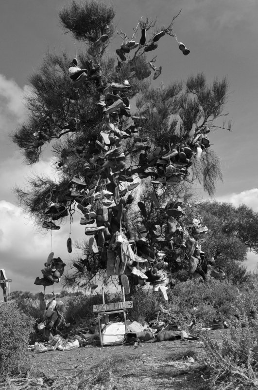 Boot Tree