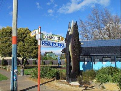65_trout2