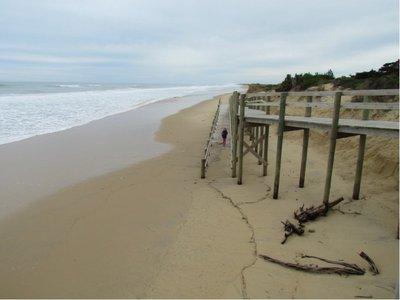 Day6_beachnew