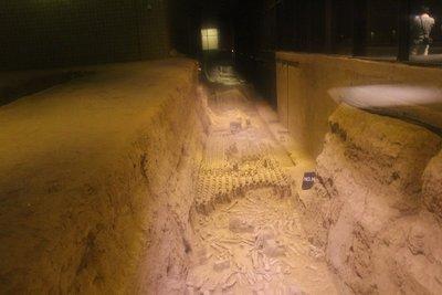Han Dynasty Museum