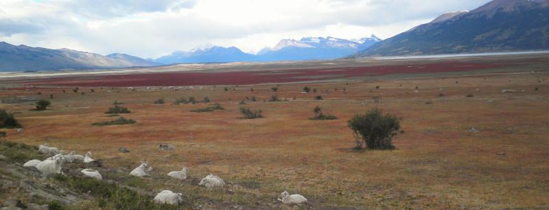 large_Ushuaia235_2.jpg