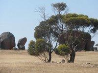 Australia_by_van_017.jpg