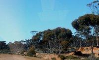 Australia_by_van_051.jpg