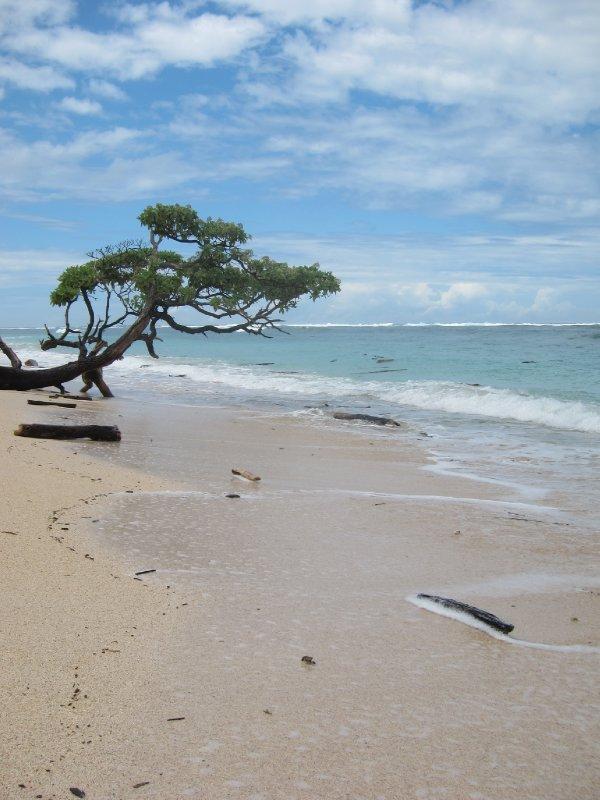 Abandoned Sumbawan Beach
