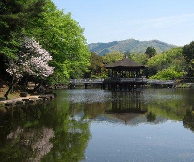 Nara Park Pagoda