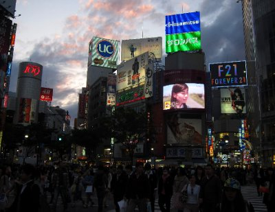 Shibuya Station Intersection at Dusk