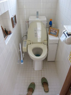 Super Toilet!
