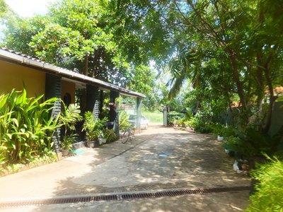 Lake view guest house Anuradhapura