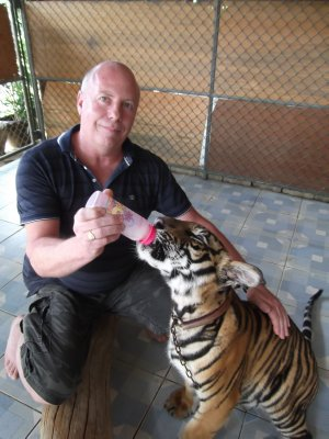 Graham feeding Tat tiger cub