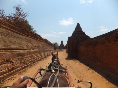 Bagan by horse and cart