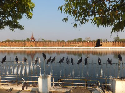Mandalay Moat and Palace