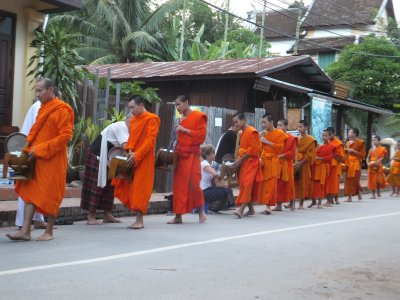 Almsgiving ceremony, Luang Prabang