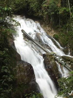 Robinson Falls