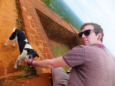 Sigiriya puppy friend