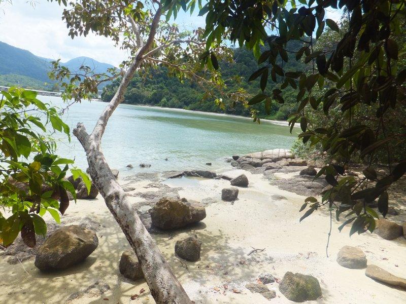 Cove at Penang national park