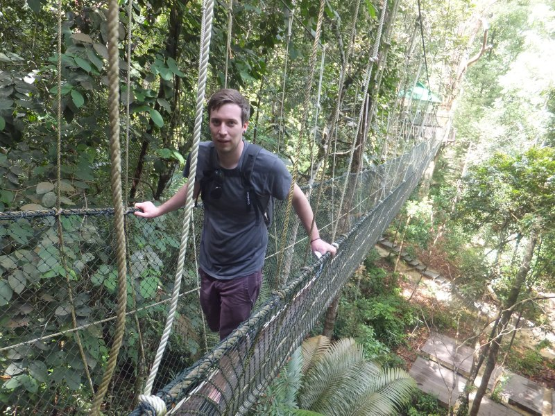 Liam on Canopy walk in Penang national park