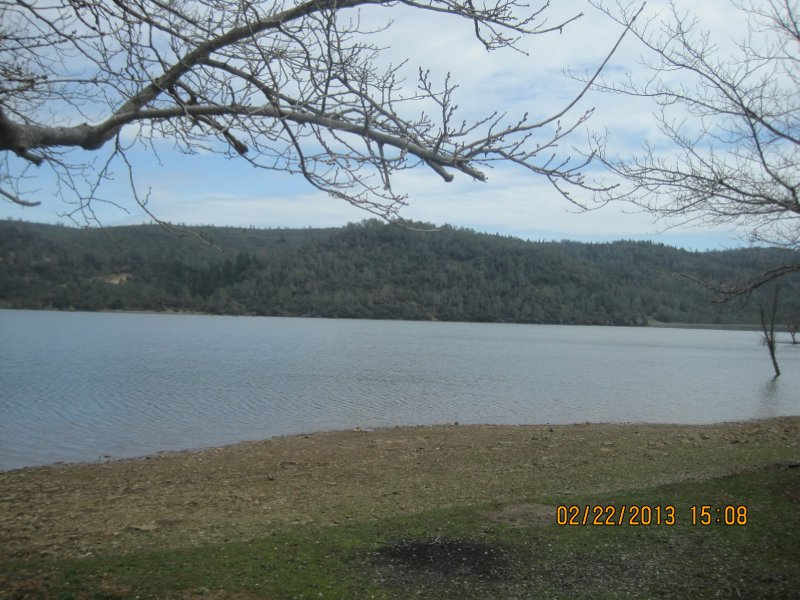 large_Collins_Lake_016.jpg