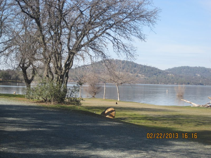 large_Collins_Lake_021.jpg