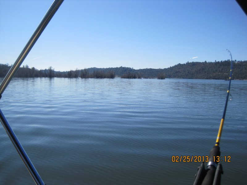 large_Collins_Lake_030.jpg