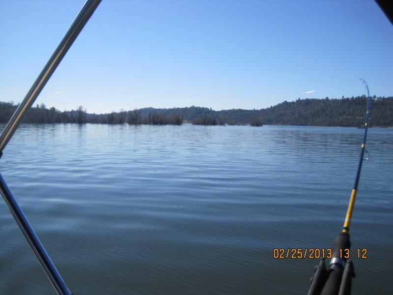 large_Collins_Lake_030.jpg