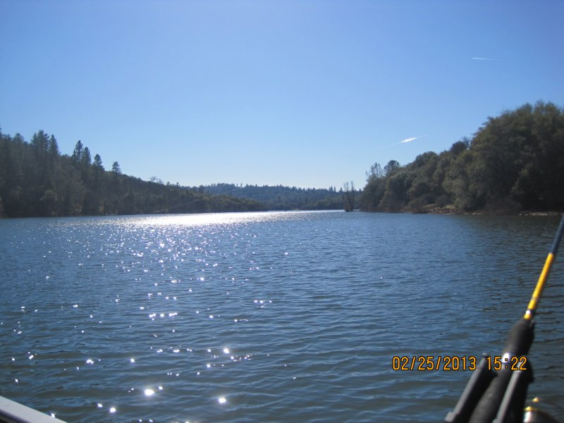 large_Collins_Lake_031.jpg
