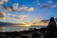 dingo_beach2.jpg