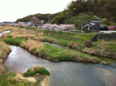 Kamo River, near Takehara JHS