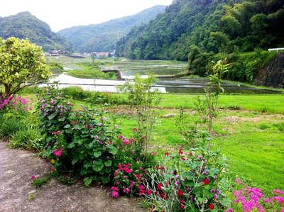 Peaceful Tamari Village, Takehara City