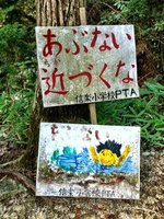 Shikoku_and_Koka_044.jpg