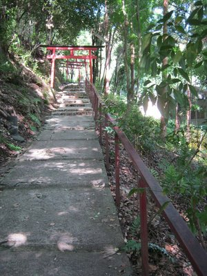 torii path in kamigamo