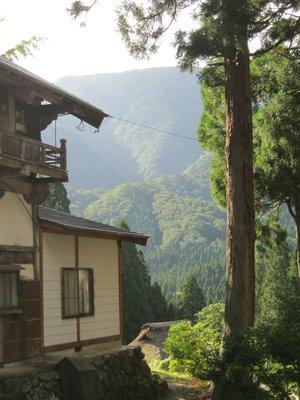 Japan_Month_1_565.jpg